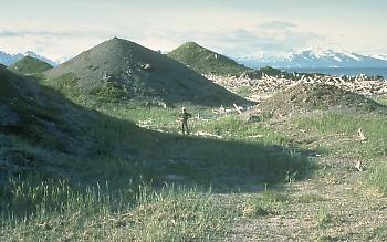 View of landslide hummmocks, Mount Augustine volcano, Alaska