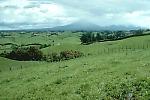 View of landslide hummmocks, Mount Taranaki (or Mt. Egmont), New Zealand