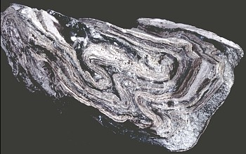 Close view of rhyolite lava sample