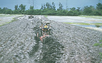 Tractor mixes ash into the underlying soil, Philippines