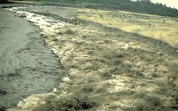Photo of lahar looking downstream from footbridge