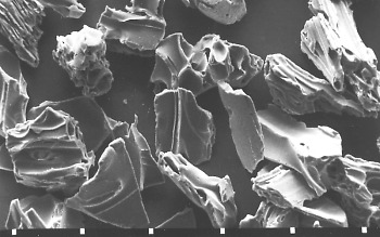 SEM image: volcanic ash, glass shards