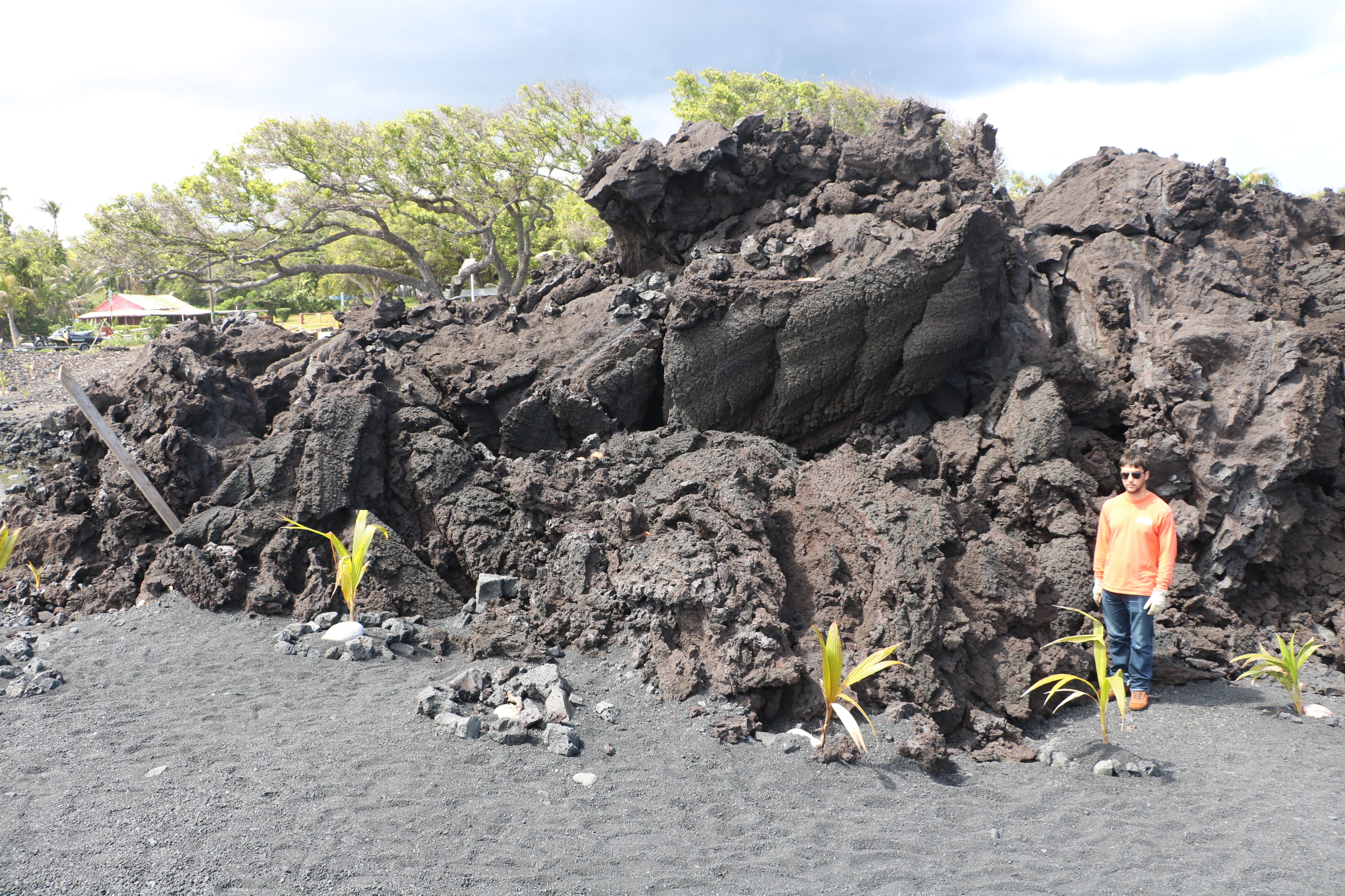 A geologist stands in front of a towering black flow of lava, which displays many squeeze-up features, looking like toothpaste that scraped out of a tube.