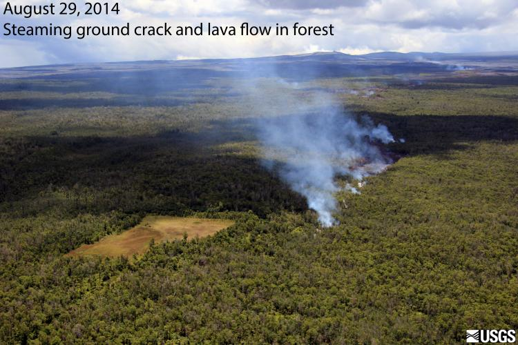 Steam rising from KILAUEA's East Rift Zone ground crack - lava flowing within crack from June 27 breakout.  PUUOO cone center horizon KILAUEA volcano, HAWAII.