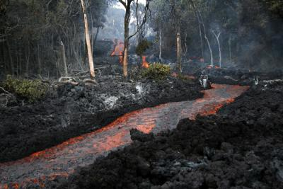 Stream of lava from Pu'u 'Ō'ō flowing through the forest in the Royal Gardens subdivision, February 28, 2008. The lava stream is about 3 m (10 ft) wide. Kīlauea Volcano, Hawai'i.  (Click image to view full size.)