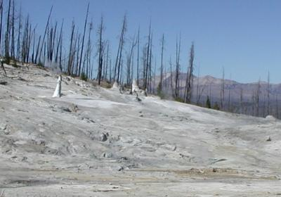 View of Monument Geyser Basin looking NE (Click image to view full size.)