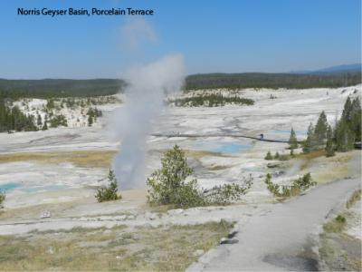 Porcelain Terrace area of Norris Geyser Basin.  Note steam vents in the foreground and many milky-blue silica depositing pools in the distance. (Click image to view full size.)