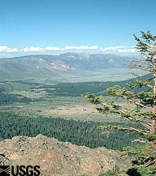 Photo of the northern rim of Long Valley Caldera.